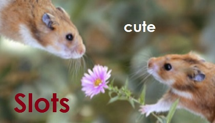 Cute Slots