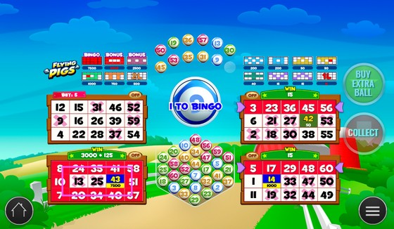 Flying Pigs Bingo