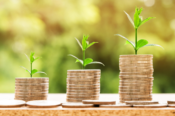 A picture of coins with a plant sprouting out of the top. It represents growing your money.
