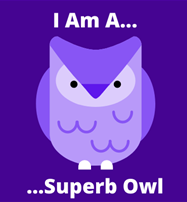 "A cartoon picture of a purple and white owl (purple is our website's brand colours). It's captioned with ""I am a superb owl"". I don't want to ruin the pun, but it's because I just mentioned Superbowl and that is the exact same spelling as Superb Owl."