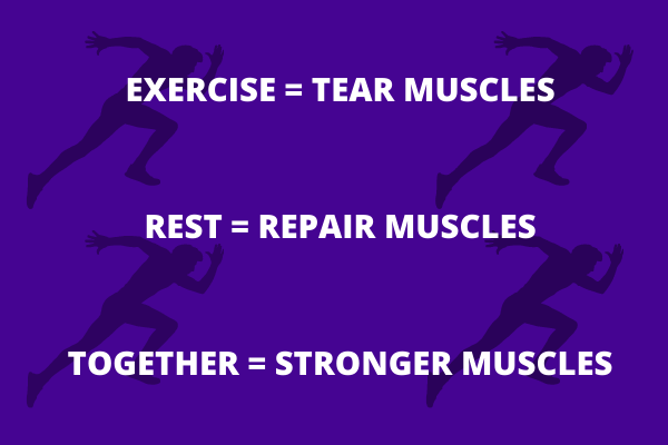"""Sebuah infografis yang memiliki empat siluet seorang pria yang sedang berlari.  Di atasnya ada kata-kata, """"Latihan = merobek otot, istirahat = memperbaiki otot, bersama = otot lebih kuat."""